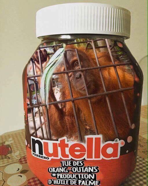 Nutella tue les Orangs Outans