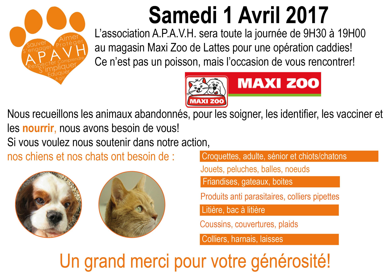 OP Maxi Zoo
