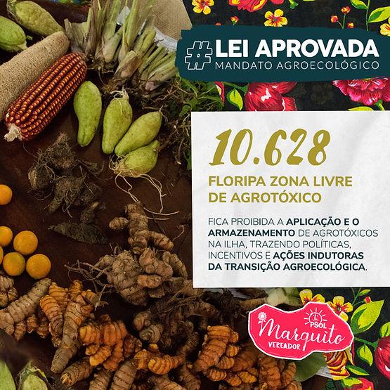Feed Lei Zona Livre de Agrotoxico site.j