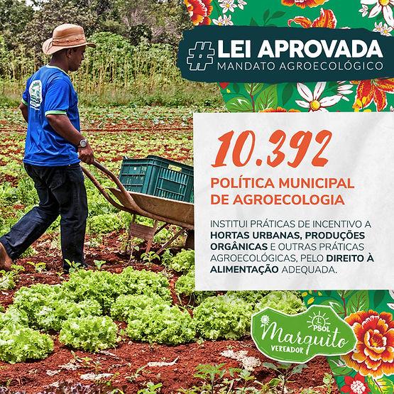 Feed Lei PMAPO site.jpg