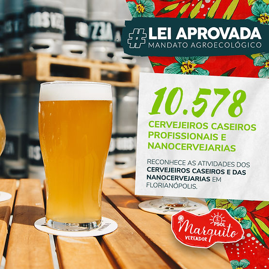 Feed Lei dos Cervejeiros site.jpg