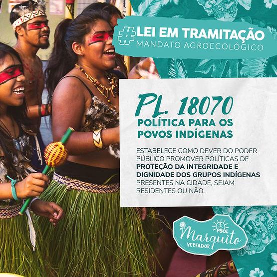 Feed_Leis_em_tramitação_Indigena.jpg