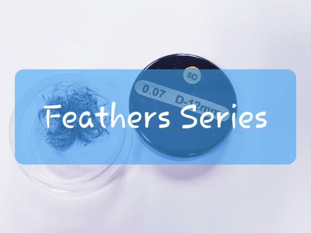 Feathers Series