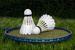 badminton-1428047_1920.jpg