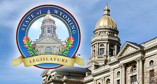WY-Legislature 2020.png
