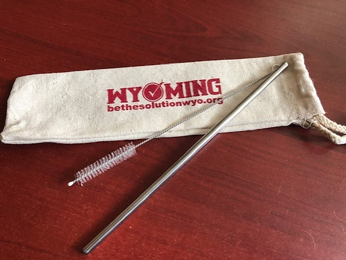 Reuse-It Stainless Steel Straw Kit