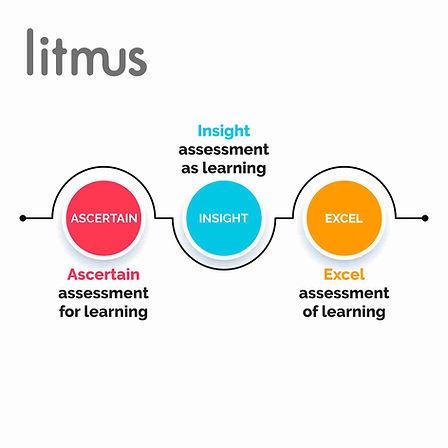 litmus6.jpg