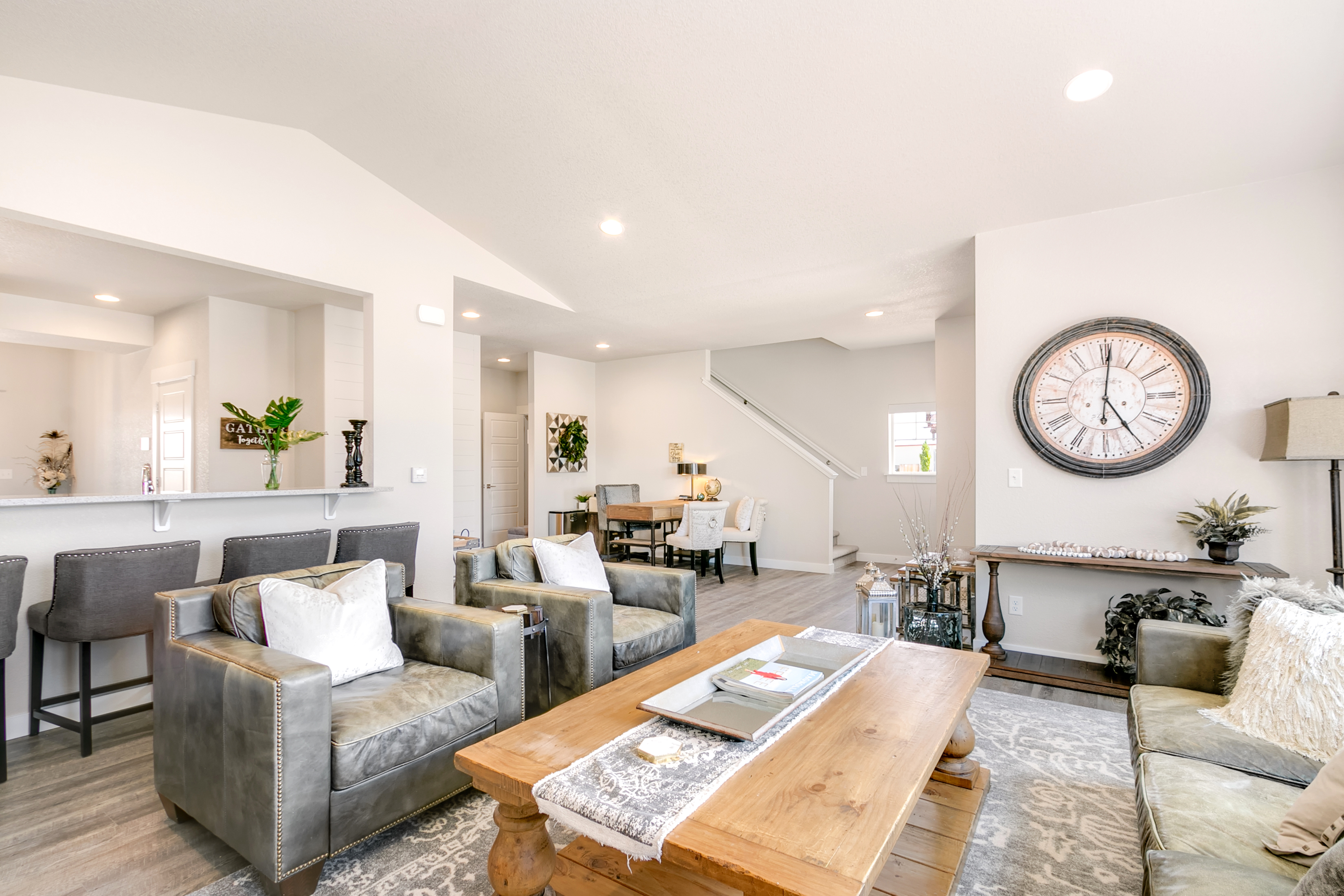 Vaulted and Open Living