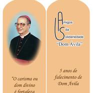 marcador livro_D Avila_12nov2010.jpg