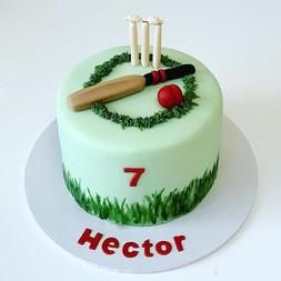 Happy birthday, Hector! #cricketcake #7t