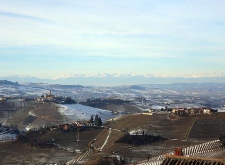 10分鐘認識Barolo和Piemonte葡萄酒