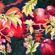 Apples #1