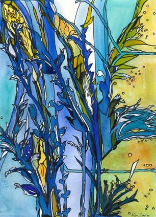Kim Corle Blue Blooms 12x16 Aqueous nfs.jpg