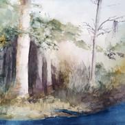 Florida Splendour