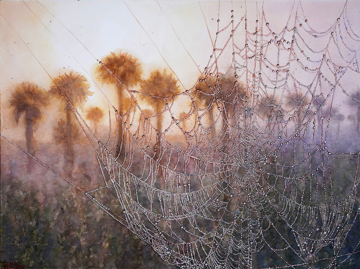 Caught in a Web of Dew Donna Morrison 22