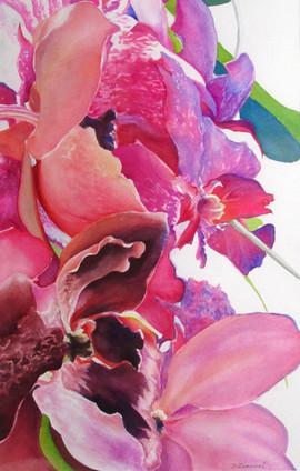 Deborah Zurawel In Bloom 21x14 trans nfs.jpg