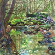 Peaceful Brook