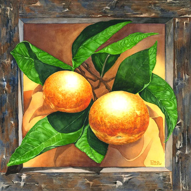 Mandarins Pea Pellew 16x16 $675 Transpar
