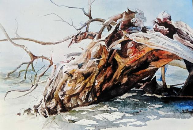 Quick Point Evie Peck Driftwood 15x20 $8