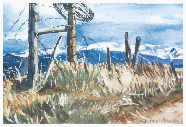 Prairie Fences