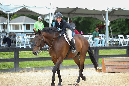 BRAVE HORSE 11.jpg
