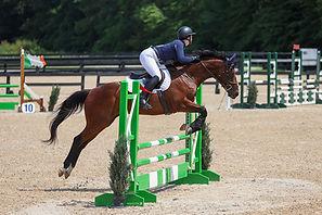 BRAVE HORSE 20.jpg