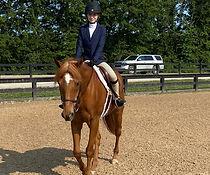 brave horse 3.jpg