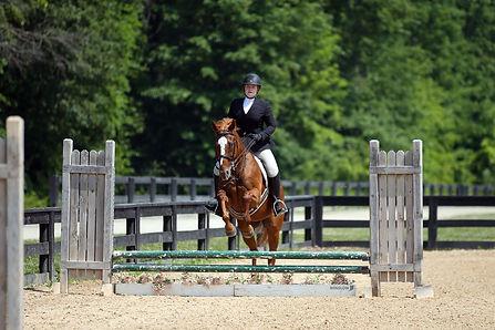 BRAVE HORSE 22.jpg