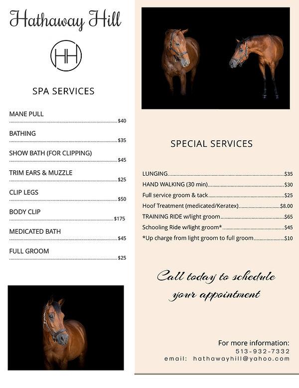 Spa Services & ala carte.jpg