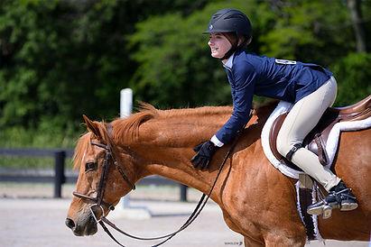 BRAVE HORSE 21.jpg