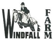 tn2_windfall_logo_copy.jpg