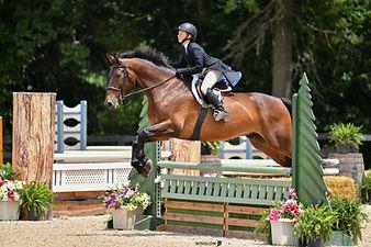 BRAVE HORSE 12.jpg