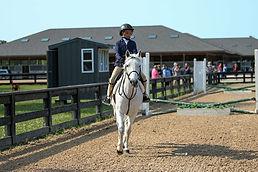 BRAVE HORSE 19.jpg
