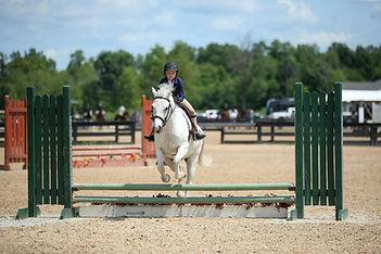 BRAVE HORSE 17.jpg