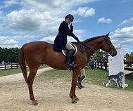 brave horse 2.jpg