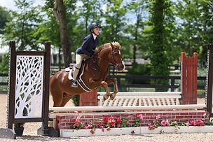 BRAVE HORSE 15.jpg