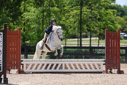 BRAVE HORSE 14.jpg