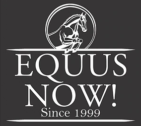 LOGO  EQUUS NOW.webp