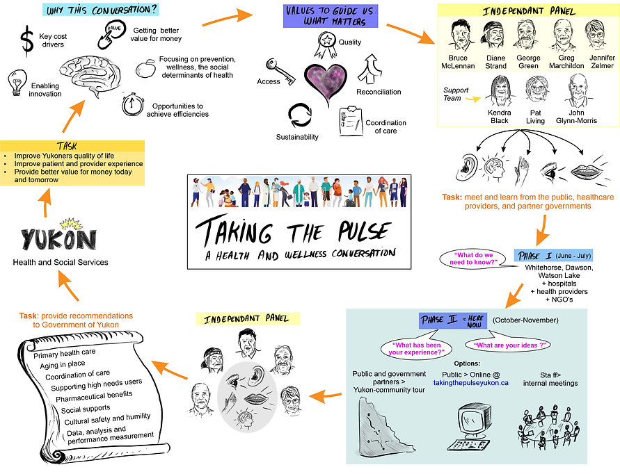 Taking the Pulse infographics