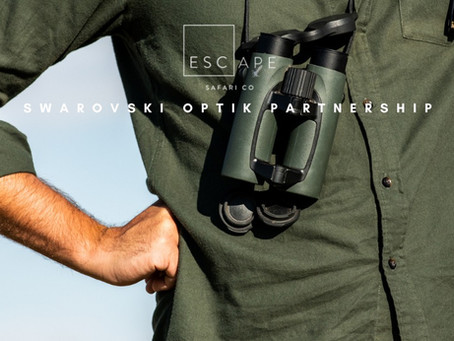 Escape Safari Co. partners with Swarovski Optik