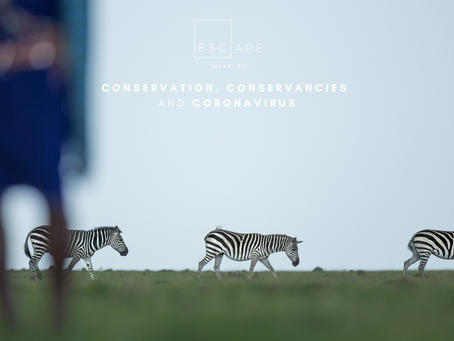 Conservation, Conservancies and Coronavirus