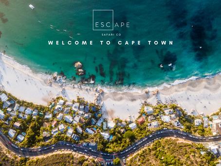 Escape is now in the Cape.
