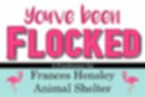 You've been  flocked.jpg