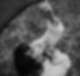 Captura de Pantalla 2020-02-09 a la(s) 1