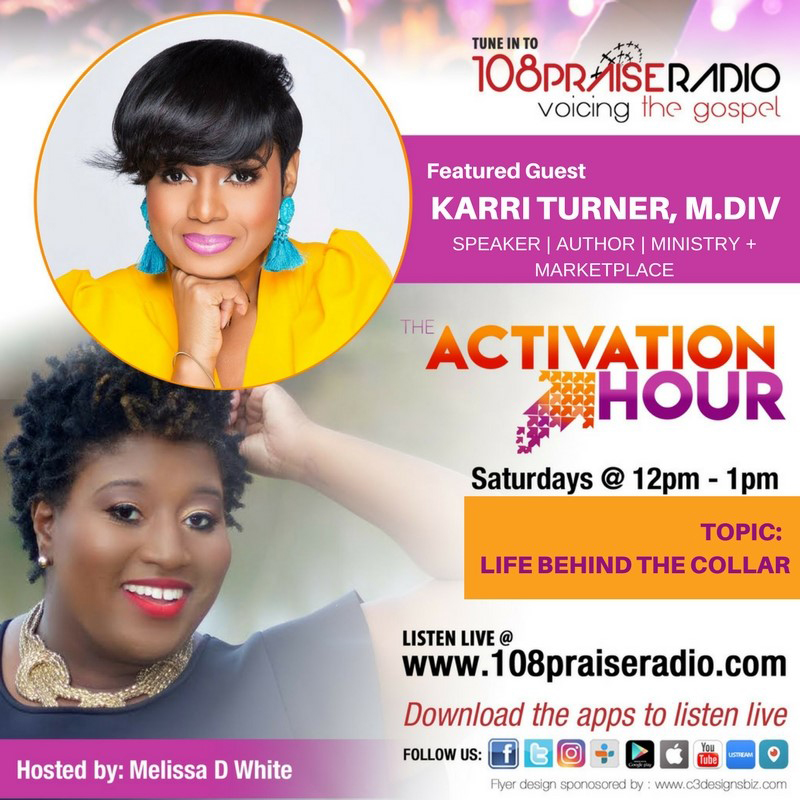 Karri Turner Flyer