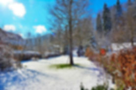 wintergarten-2.jpg