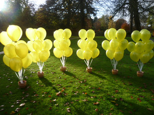 A yellow balloon for every year of life.