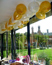 Gold and ivory balloon ceiling.