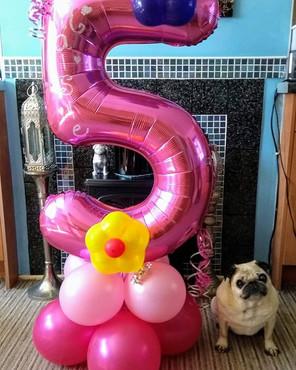 Personalised Pets Birthday Balloons Anyone???