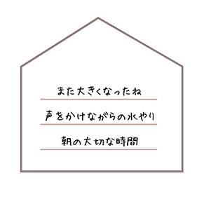 misuyari.png
